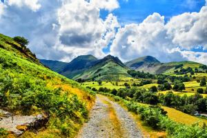 Green-Rolling-Hills-Landscape-300px